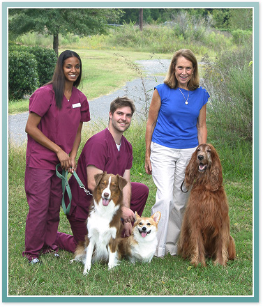 About Steele Creek Animal Hospital